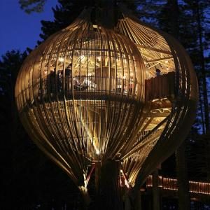 9 Most amazing treehouse designs in the world, see once