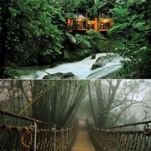 6 Magical Tree House Resorts in India