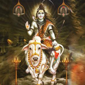 Why is Shravan dedicated to Lord Shiva?
