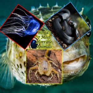 World`s 7 most horrible animals