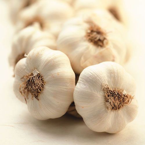 Surprising health Benefits of Garlic, health benefits, surprising health benefits of garlic