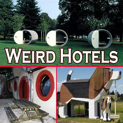 Weird Designed Hotels In The World , weird designed hotels in the world,  travel,  hotels,  resorts,  cuisines,  destinations,  latest news,  ifairer